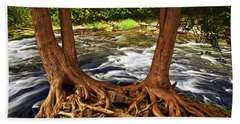 River And Roots Beach Towel