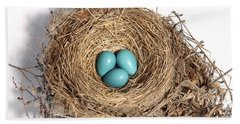 Robins Nest With Eggs Beach Sheet by Ted Kinsman