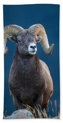 Rocky Mountain Big Horn Beach Towel