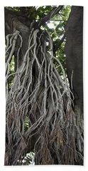 Roots From A Large Tree Inside Jallianwala Bagh Beach Towel by Ashish Agarwal