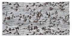 Beach Sheet featuring the photograph Sandpipers In Flight by Dan Friend