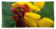 Beach Towel featuring the photograph Scotch Broom by Chriss Pagani
