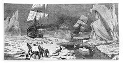 Seal Hunt, 1881 Beach Towel