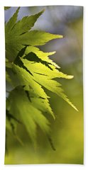 Beach Towel featuring the photograph Shades Of Green And Gold. by Clare Bambers