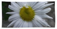 Shasta Daisy Beach Towel