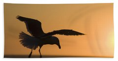 Silhouette Of A Seagull In Flight At Beach Towel