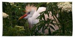 Sleepy Egret In Elderberry Beach Towel