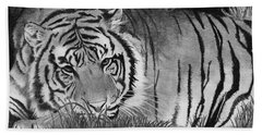 Sleepy Tiger Beach Towel
