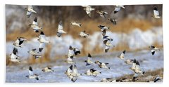 Snow Buntings Beach Towel by Tony Beck
