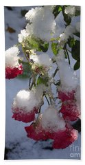 Snow Covered Roses Beach Sheet