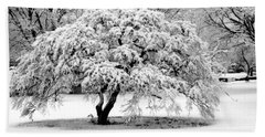 Snow In Connecticut Beach Towel by John Scates