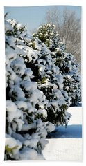 Snow In The Trees Beach Towel