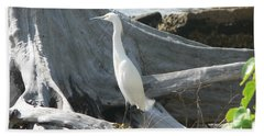 Beach Sheet featuring the photograph Snowy Egret by Laurel Best