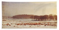 Snowy Landscape Beach Towel by Lyn Randle