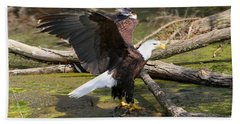 Beach Towel featuring the photograph Soaring Eagle by Elizabeth Winter
