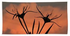Spider Lilies At Sunset Beach Towel