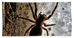 Beach Towel featuring the photograph Spiders Home by Chriss Pagani