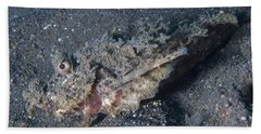 Spiny Devilfish Camouflaged Beach Towel