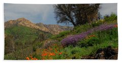 Beach Sheet featuring the photograph Spring In Santa Barbara by Lynn Bauer
