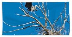 Springtime Nesting In Colorado Beach Sheet