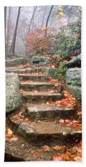 Steps Cloudland Canyon Beach Towel