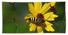 Striped Bee On Wildflower Beach Towel