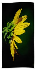Beach Towel featuring the photograph Sunflower In Profile by Vicki Pelham