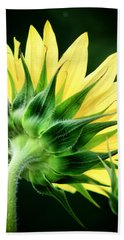 Sunflower With Bee Beach Towel by Lynne Jenkins
