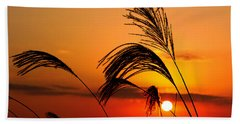 Sunset And Pampus Beach Towel