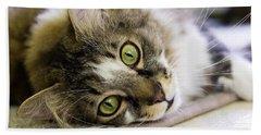 Tabby Cat Looking At Camera Beach Towel