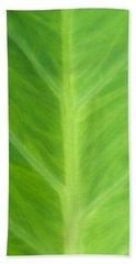 Taro Or Elephant Ear Leaf Beach Towel by Denise Beverly