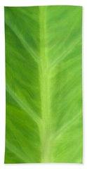 Beach Sheet featuring the photograph Taro Or Elephant Ear Leaf by Denise Beverly
