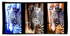 Beach Towel featuring the photograph The Three Zebras Black Borders by Rebecca Margraf