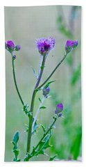 Thistledown Pastel Passion Beach Sheet