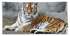 Tiger Resting Beach Towel