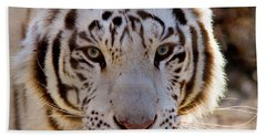 Tiger Stripes Exotic Animal Sanctuary 8 Beach Towel by Dan Wells