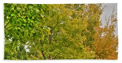 Beach Towel featuring the photograph Transition Of Autumn Color by Michael Frank Jr