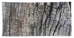Tree Bark No. 1 Stress Lines Beach Sheet by Lynn Palmer