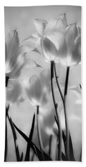 Beach Towel featuring the photograph Tulips Glow by Michelle Joseph-Long