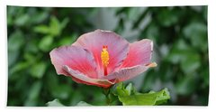 Beach Towel featuring the photograph Unusual Flower by Jennifer Ancker