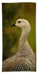 Upland Goose Portrait Beach Towel