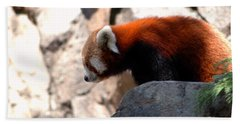 Valley Of The Red Panda Beach Sheet by LeeAnn McLaneGoetz McLaneGoetzStudioLLCcom