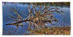 Waterlogged Tree Beach Towel