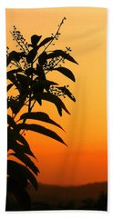 Whipple Hill Beach Towel