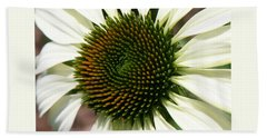 Beach Towel featuring the photograph White Coneflower Daisy by Donna Corless