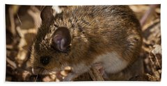 White-footed Mouse Beach Towel