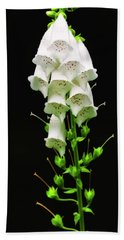 Beach Towel featuring the photograph White Foxglove by Albert Seger