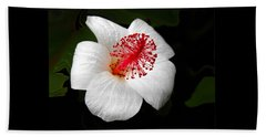 Beach Towel featuring the photograph White Hibiscus Flower by Rebecca Margraf