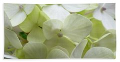 White Hydrangea Beach Sheet by Barbara Moignard