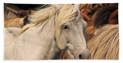 White Icelandic Horse Beach Towel